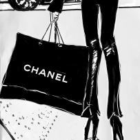 The Chanel Bag